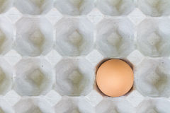 Egg in a carton package Stock Photos
