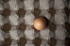 An Egg in an Egg Carton with Shadows creating a Check Pattern. A single egg alone in a cardboard egg carton with shadows creating a checkered pattern Stock Photo