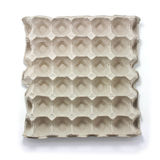 Egg carton tray Royalty Free Stock Image