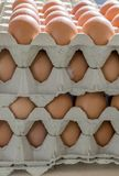 Egg cartons and eggs. Stack with cartons and brown, fresh eggs Royalty Free Stock Images