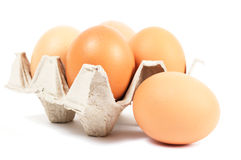 Egg and cell with eggs Royalty Free Stock Images