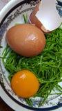 Egg. Cha. Cha fried egg .thai food eat Stock Image