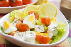 Egg and cheese salad Royalty Free Stock Images