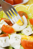 Egg and cheese salad Stock Image