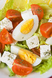 Egg and cheese salad Royalty Free Stock Image