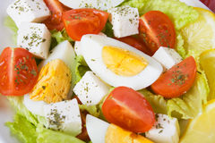 Egg and cheese salad Royalty Free Stock Photography