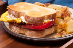 Egg, cheese, tomato, bacon sadwich Royalty Free Stock Images