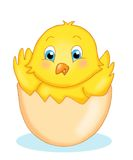 Egg with the chick. Illustration of a happy chick into an eggshell stock illustration