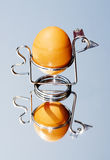 Egg in chicken egg cup Royalty Free Stock Photography