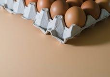 Egg, Chicken Egg Stock Photography