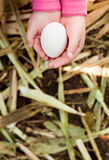 Egg in child's hand. White egg in child's hand Royalty Free Stock Image