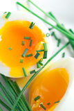 Egg And Chives Royalty Free Stock Photography