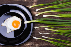 Egg , chives and plate Royalty Free Stock Photo