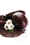 Egg chocolate Royalty Free Stock Photo