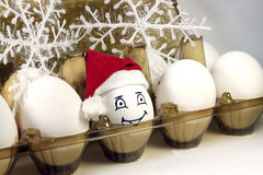 Egg in christmas hat Royalty Free Stock Images