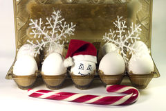 Egg in christmas hat Royalty Free Stock Photos