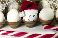 Egg in christmas hat Stock Image