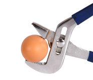 Egg clamped in a vise pipe fittings key Royalty Free Stock Image