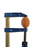 Egg clamped vise for wood Royalty Free Stock Photos
