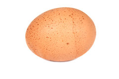Egg close up. On a white background Royalty Free Stock Photography