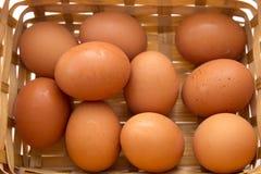 Egg a coleção na cesta isolada no branco Foto de Stock Royalty Free