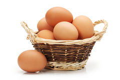 Egg collection Royalty Free Stock Photo