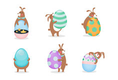 Egg collection A Royalty Free Stock Image