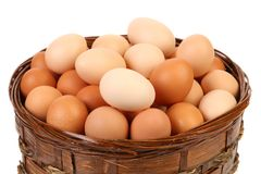 Egg collection isolated Royalty Free Stock Photography
