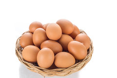 Egg collection isolated on white background Royalty Free Stock Photo