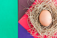 Egg on a colored background. Royalty Free Stock Photos