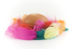 Egg and colored feathers Royalty Free Stock Image