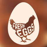 Egg with concept chicken silhouette inside on background Royalty Free Stock Images