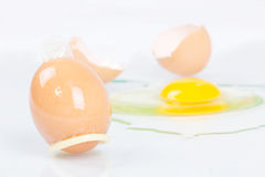 Egg with condom. Stock Photography