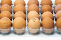 Egg container with one of eggs broken royalty free stock photo