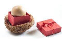 egg in contenitore di regalo rosso su fondo bianco Fotografia Stock Libera da Diritti