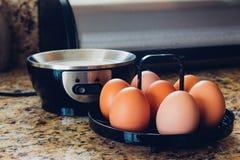 Egg Cooker Stock Photo