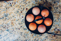 Egg cooker Royalty Free Stock Images