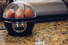 Egg cooker Royalty Free Stock Photo