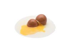 Egg. Cracked egg shell On a white background Stock Photos