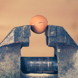 An Egg Cracking under Pressure from Vice Royalty Free Stock Image