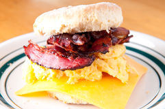 Egg, cristpy bacon, cheese sandwich on a homemade butterm Royalty Free Stock Image