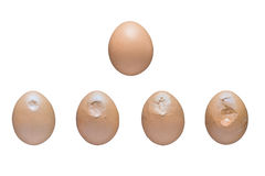 Egg crushing process. Egg breaking process. Hatched chicks born royalty free stock photography