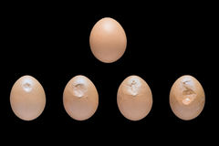 Egg crushing process. Egg breaking process. Hatched chicks born stock photography