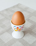 Egg cup. One boiled egg in an egg cup Royalty Free Stock Photography