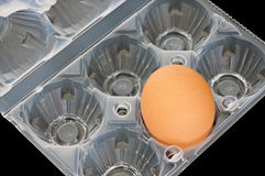 Egg-cup Stock Image