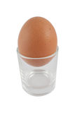 Egg cup. Single egg cup, isolated on a white background Stock Images