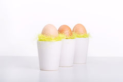 Egg in cup - symbol of life. On table Stock Photo