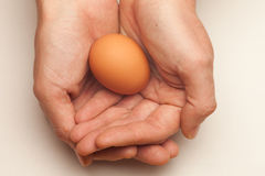 Egg cupped in hands Stock Photography