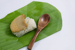 Egg custard with sweet sticky rice Stock Photography