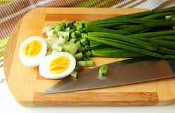Egg, cut in half, and green onion Stock Photo
